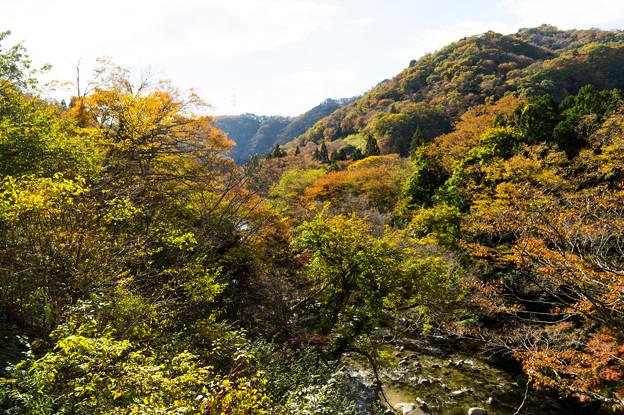写真: いわき夏井川渓谷-72