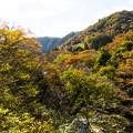 いわき夏井川渓谷-72