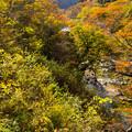 写真: いわき夏井川渓谷-76