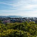 写真: 鎌倉2-24