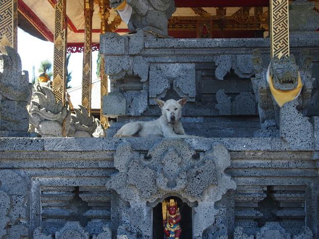 ウルン・ダヌ・バトゥール寺院/Pura Ulun Danu Batur