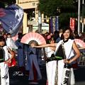 Photos: 櫻笑