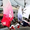 写真: 櫻笑ソーラン部の大旗振り