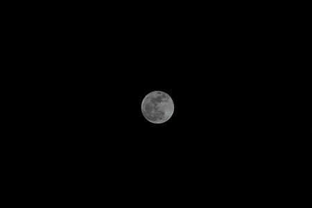 2010.01.30 満月(3/3)