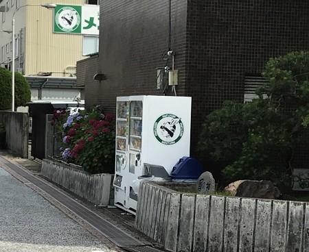 20170624日牟礼八幡宮散策3