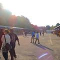 写真: 秋の名古屋城 - 08:盆栽展
