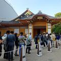 Photos: 秋の名古屋城 - 12:本丸御殿の行列