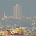 写真: 秋の名古屋城 - 23:天守閣最上階からの眺め(桃花台ニュータウン)