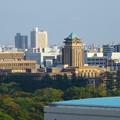 秋の名古屋城 - 31:天守閣最上階からの眺め(名古屋市役所と愛知県庁)