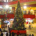 写真: アスナル金山のクリスマス・イルミネーション、今年(2014)はディズニーと提携? - 22