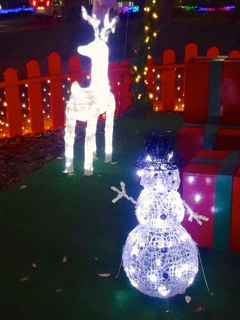 ノリタケの森のクリスマス・イルミネーション 2014 No - 15