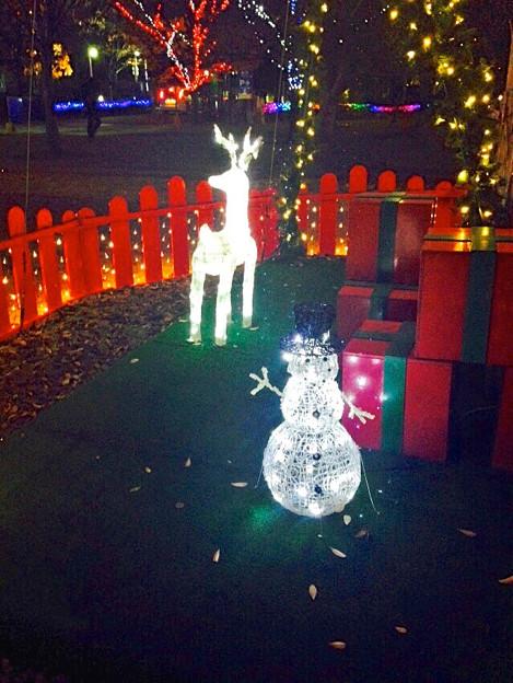 ノリタケの森のクリスマス・イルミネーション 2014 No - 16