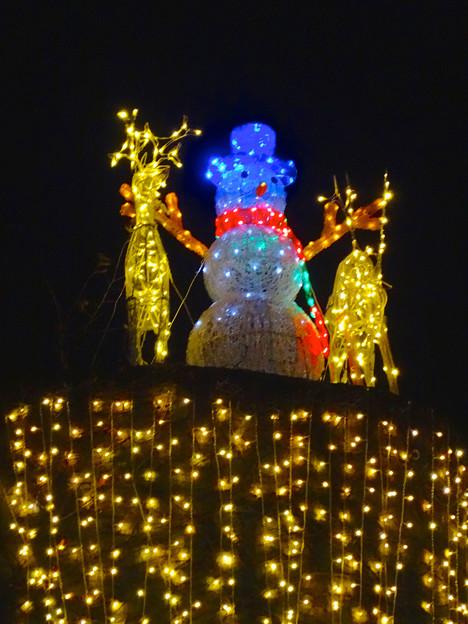 ノリタケの森のクリスマス・イルミネーション 2014 No - 21