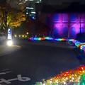 Photos: ノリタケの森のクリスマス・イルミネーション 2014 No - 43