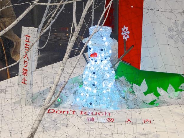 招き猫広場のクリスマス・イルミネーション 2014 No - 08