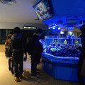 Photos: 名古屋港水族館 - 46