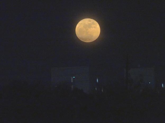 昇ったばかりで、赤みが濃い月(今年初の満月) - 3
