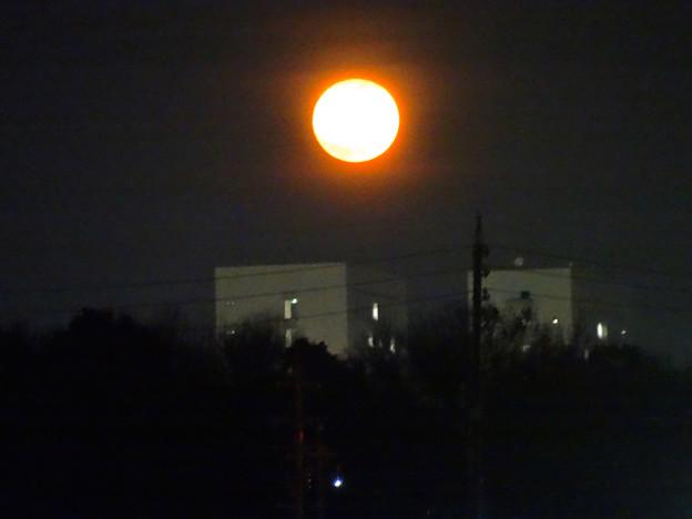 昇ったばかりで、赤みが濃い月(今年初の満月) - 4