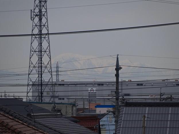 小牧原駅ホームから見えた、雪を戴く(たぶん)伊吹山 - 1