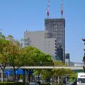 写真: 建設進む御園座の高層マンション(2017年4月18日) - 5