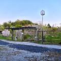 多治見市営球場隣りの太陽公園 - 2:満開だった枝垂れ桜?