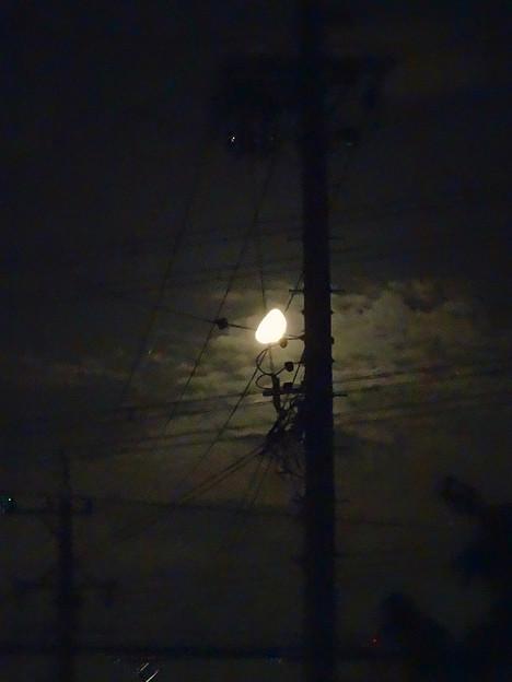 電柱越しに見えた半月 - 1