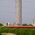 写真: 庄内川沿いから見たザ・シーン城北 - 2