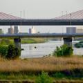写真: 名岐バイパス「新名西橋」 - 2