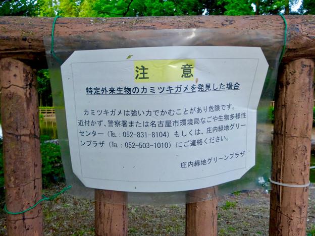 庄内緑地公園:カミツキガメの注意書き