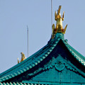 写真: 名城公園から見上げた名古屋城天守閣 - 14:金シャチ