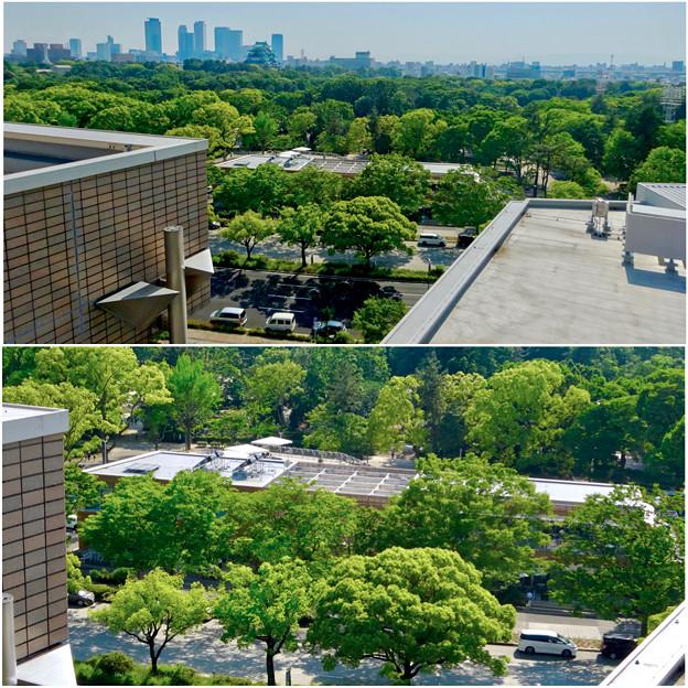 近くのマンションから見下ろした名城公園の複合商業施設「tonarino(トナリノ)」 - 2