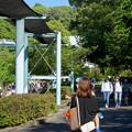 Photos: 大勢の人で賑わってた東山動植物園(2017年5月28日) - 8
