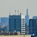 Photos: 落合公園 水の塔から見た景色:名古屋テレビ塔の頭頂部とNTTドコモ名古屋ビル - 2
