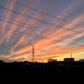 写真: 綺麗だった、今日夕方の筋雲 - 3