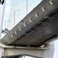 金城ふ頭から見上げた名港中央大橋 - 13