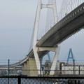 金城ふ頭から見上げた名港中央大橋と名港東大橋 - 3