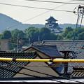 写真: 犬山駅から見えた、落雷でシャチホコが壊れた犬山城(2017年7月15日) - 1