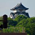 写真: 犬山城下町から見上げた、落雷でシャチホコが壊れた犬山城(2017年7月15日) - 1