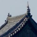 写真: 犬山城下町から見上げた、落雷でシャチホコが壊れた犬山城(2017年7月15日) - 5