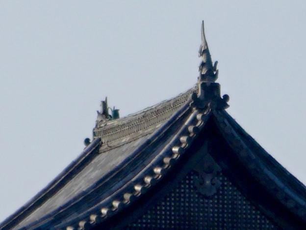 犬山城下町から見上げた、落雷でシャチホコが壊れた犬山城(2017年7月15日) - 8