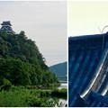 写真: 木曽川沿いから見上げた、落雷でシャチホコが壊れた犬山城(2017年7月15日) - 15