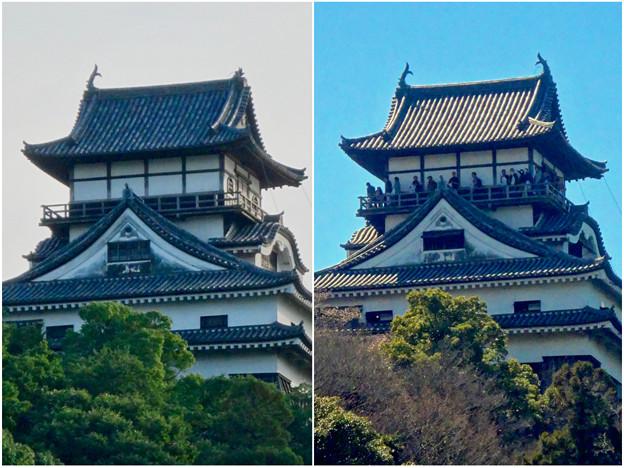 写真: 落雷でシャチホコが破損した数日後の犬山城と2年前(2015年3月)の犬山城比較 - 5