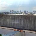 イオン小牧店屋上駐車場から見た景色 - 12:塀の上で日向ぼっこしてる(?)鳩