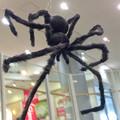 エアポートウォーク名古屋:ハロウィン装飾 2017 No - 6(エスカレーターの上に大きな蜘蛛!?)