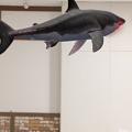 写真: 空中を泳ぐリアルなサメをAR表示できる「shARk」:アプリ内課金でホオジロザメを表示 - 23