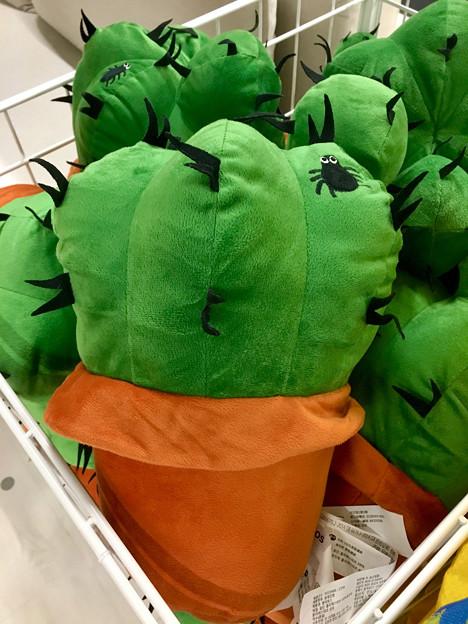 オープン1ヶ月後でも大勢の人で賑わう「IKEA長久手」 - 53:サボテンのヌイグルミ