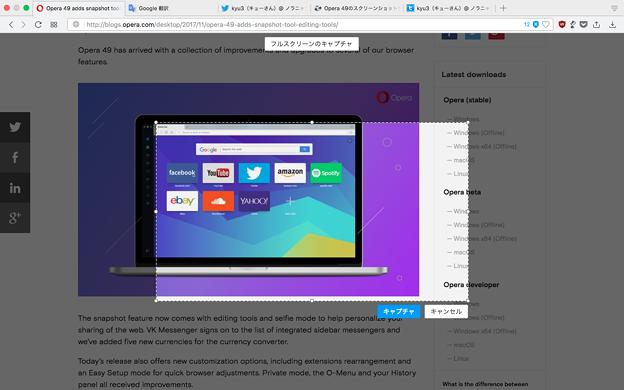 Opera 49のスクリーンショット機能 - 16