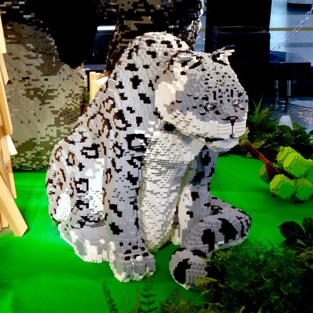 クリスタル広場:レゴで作った東山動植物園の「ユキヒョウ」? - 2