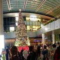 写真: ゲートタワー前のクリスマスツリー(2017年11月12日) - 4:パノラマ