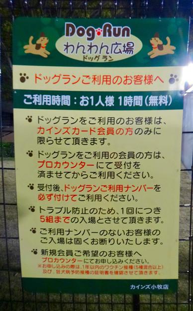 カインズ小牧店に会員制ドッグラン - 7